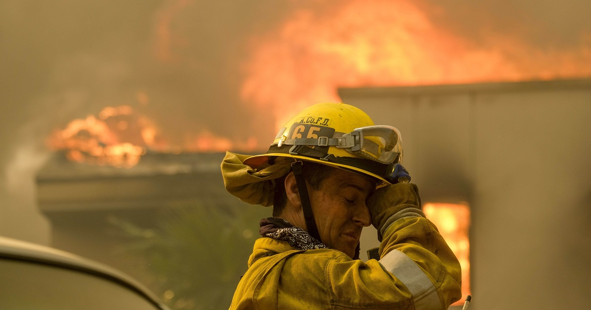 4 ways to stop the deadly cycle of wildfires